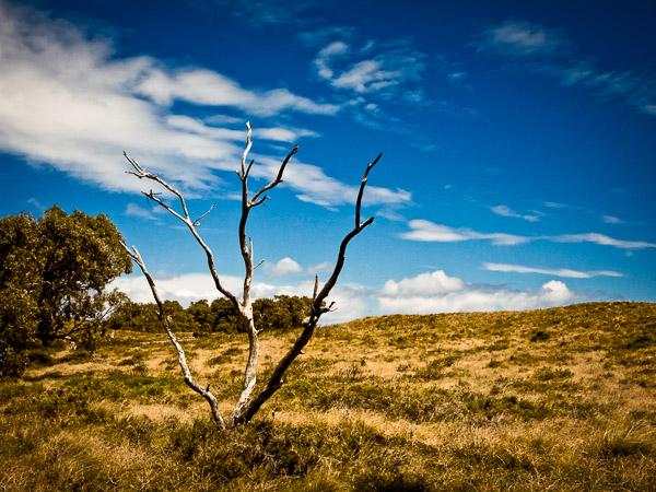 Rottnest Island, Zachodnia Australia