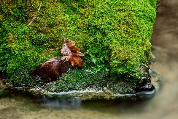 tomasz-bobrzynski-photography-2013-Waterfall-4